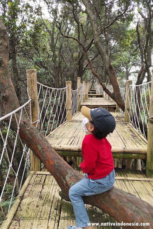 platform ramah anak di cantigi skywalk ciwidey_1