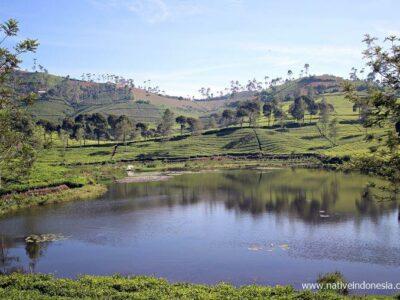Review jalan Bandung-Pangalengan-Rancabuaya