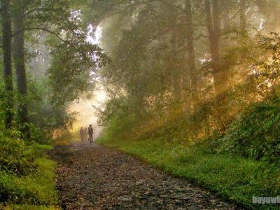 Wisata Alam di Taman Buru Gunung Kareumbi Masigit