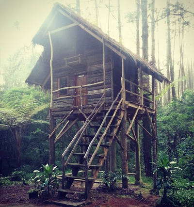 rumah pohon kareumbi