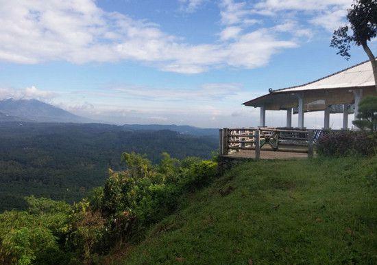 Tlogo Plantation - tempat wisata di salatiga