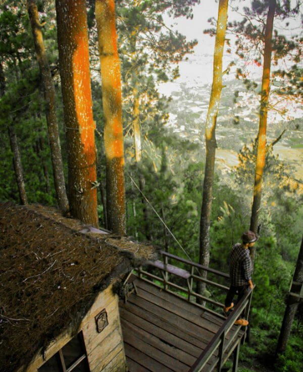 Rumah Pohon Paralayang Batu