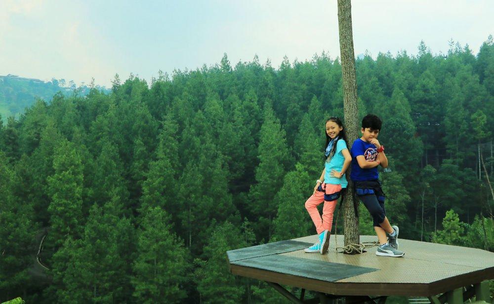 Sky Tree di Dago Dream park