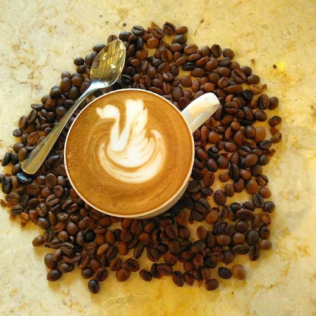 Vredeburg Indische Koffie 1