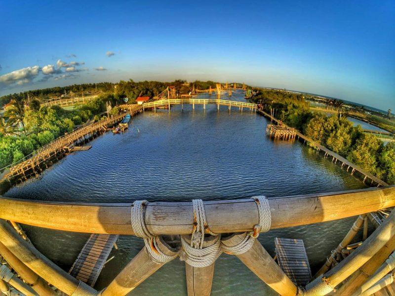Mangrove Kulon Progo Aerial View