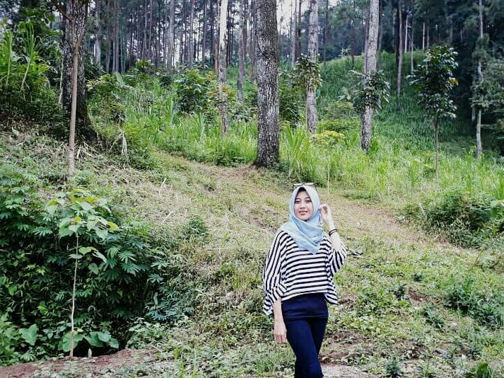 Omah Kayu Forest