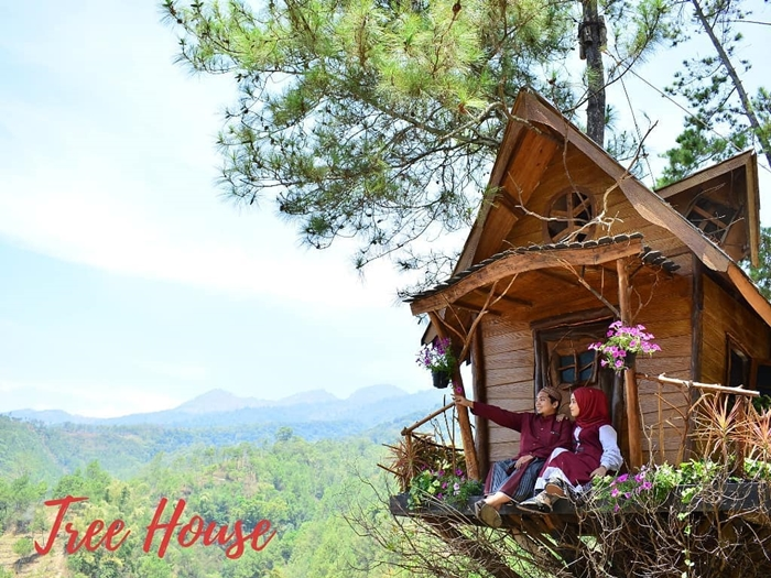 Coban Rais Tree House