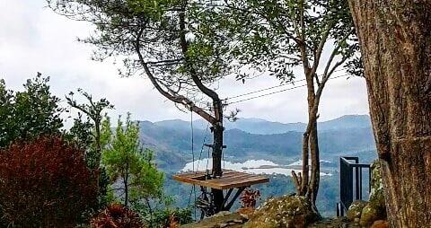 Kalibiru Tree Platform 2