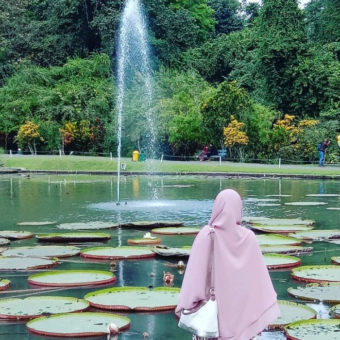 Kebun Raya Bogor Air Mancur