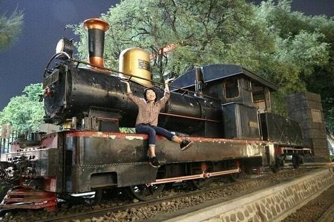 Lawangsewu Train