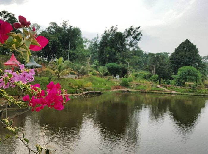 Le Hu Garden Pool