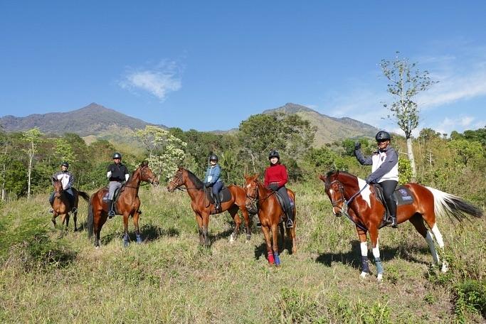 Taman Safari Prigen Horse Riding
