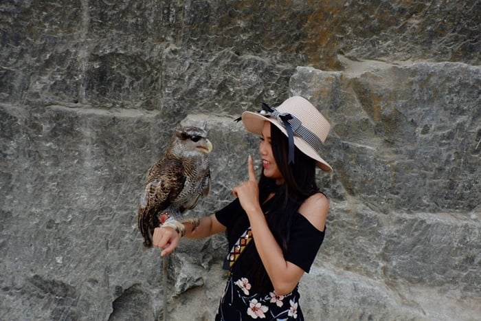 Owl Breccia Cliffs