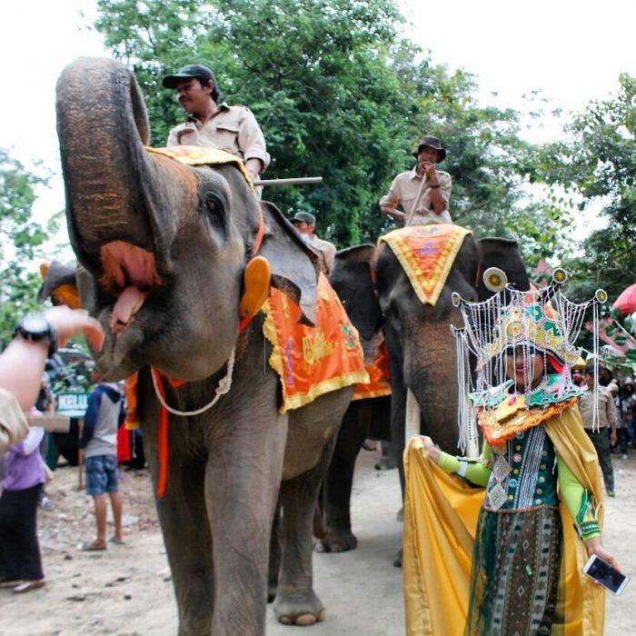 Way Kambas Carnival