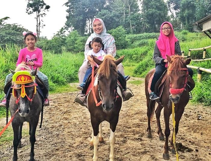Kuntum Farm Horse Riding