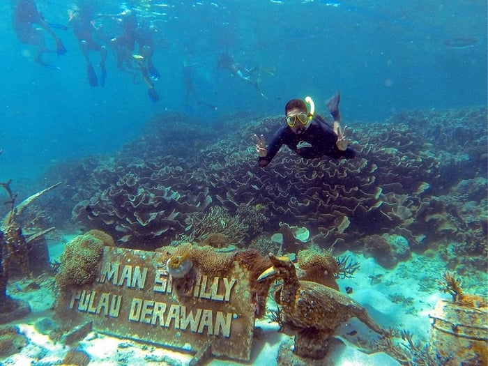 Pulau Derawan Diving Spot