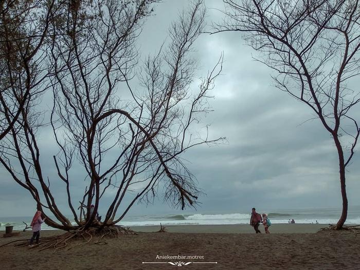 Pantai Goa Cemara Pantai 2