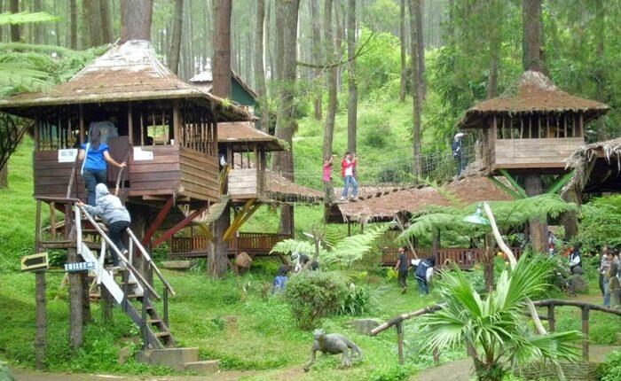 Rumah Pohon Jatiasih.