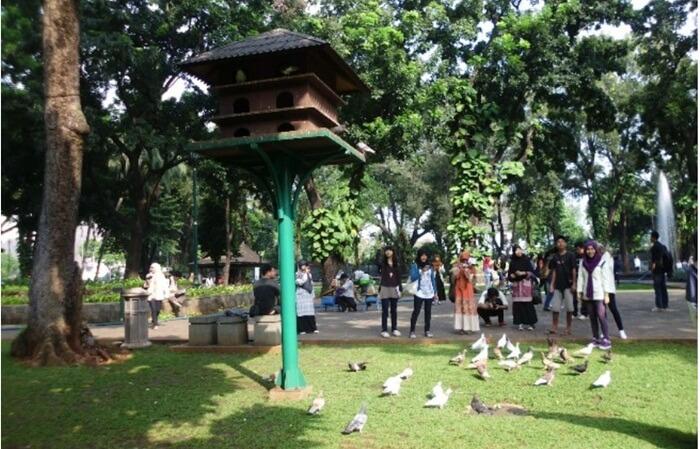 Burung di Taman