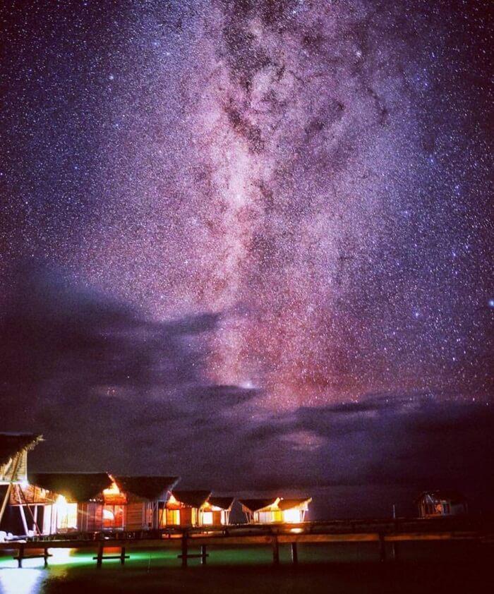 Stargazing Night
