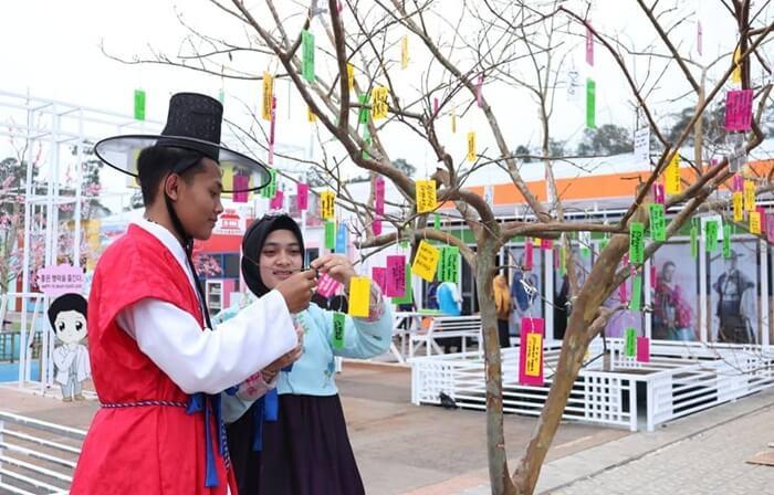 pohon harapan korea