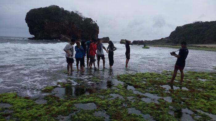 karang pantai