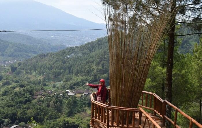 Pesona dataran Tinggi Goa Pinus malang