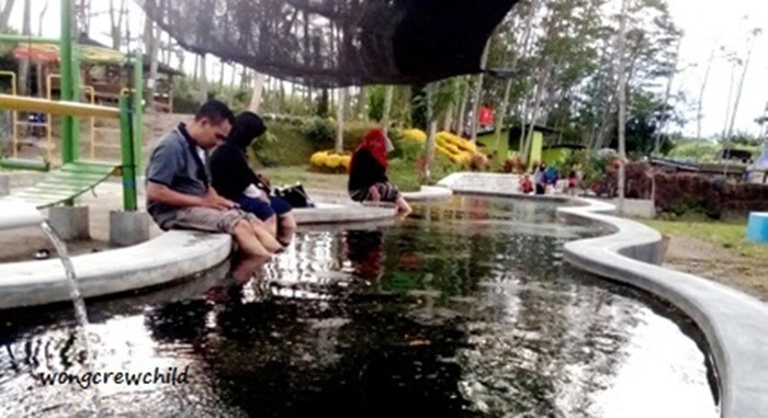 doctor fish sebuah perawatan kulit alternatif. ada di kediri eco park