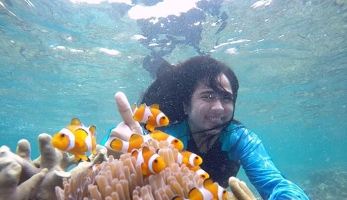 snorkeling teluk kiluan sangat dangkal,s ehingga peserta pemulapun tidak akan kesulitan untuk menikmati keindahan terumbu lokasi ini