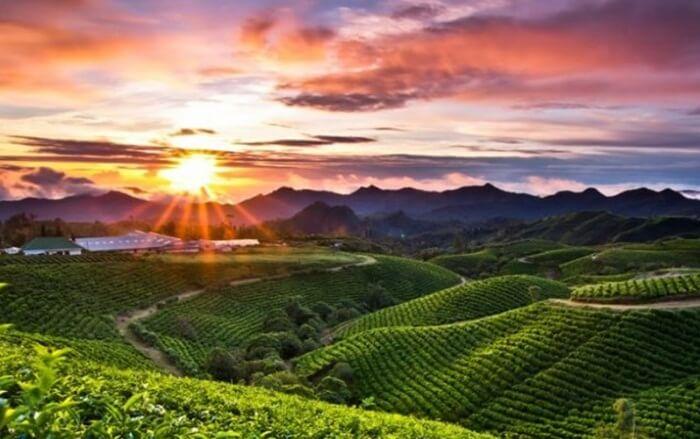 Sunset di Malino Highlands dilihat dari cafe di atas bukit.