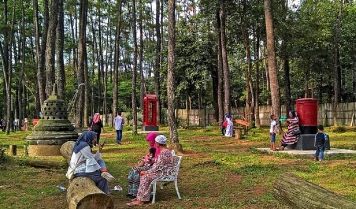 punti kayu cocok unutk lokasi wisata keluarga, dnegan lahan yang lapang dan teduh, bsia menjadi media mengakrabkan antar angota keluarga