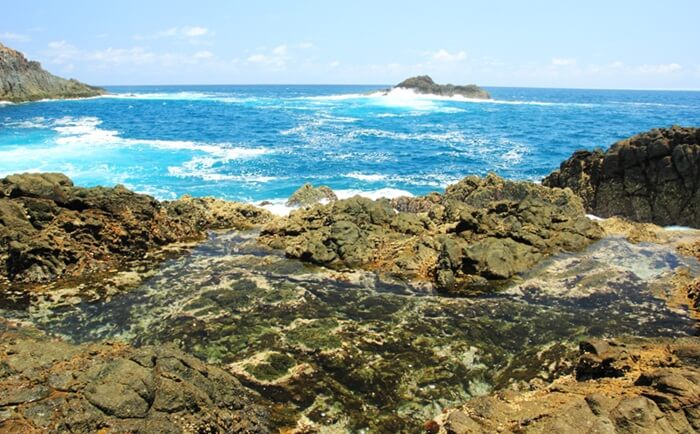 Aquarium laut pantai semeti terbentuk dari sisa ombak yang terjebak dalam cekungan batuan karang pantai