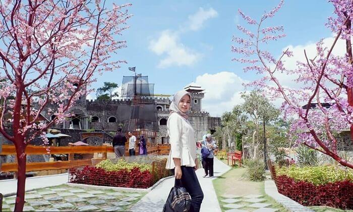 hiasanpohon sakura di area The Lost World Castl memberikan tempat untuk bereksperimen membuat foto yang cantik