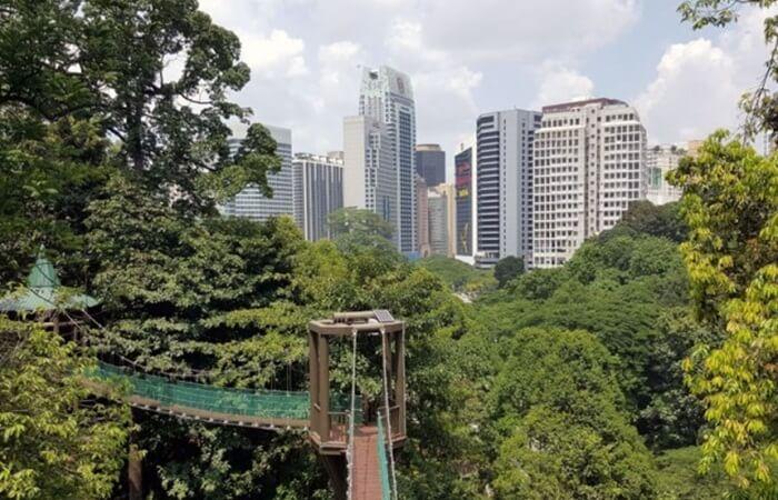Kuala Lumpur Forest Eco Park, tempat wisata di kuala lumpur berupa taman luas yang menyegarkan pikiran