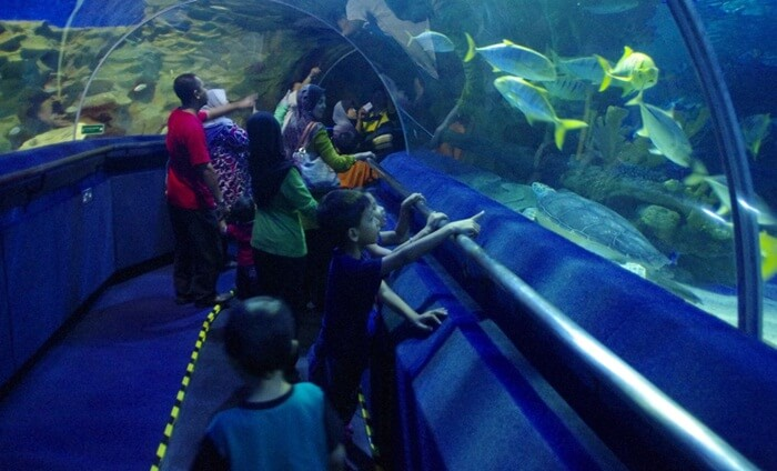tempat wisata di kuala lumur ini menawarkan kedekatan mendalam dengan dunia ikan dan habitatnya