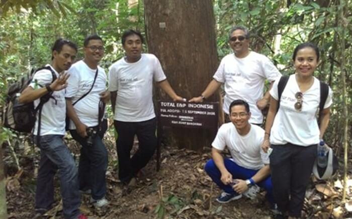 adopsi pohons elain bsia dilakukan perorangan juga bisa dilakukan secara berkelompok. nama para orang tua angkat akan di pasang pada plakat di bawah pohon yang diadopsi di bukit bangkirai