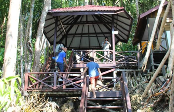 Awal perjalanan trekking sejauh 500 meter menuju tepi danau ubur ubur pulau kakaban.