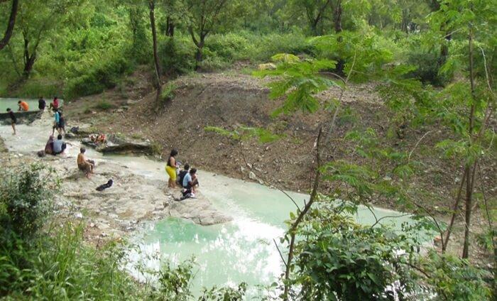 Salah satu sudut hutan wisata wanawisata ciwaringin yang mengasikkan untuk penjelajahan hutan.