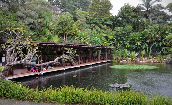 lokasi kuline rmalang yang memebrikan suasana pedesaan dengan saung di atas kolam ikan