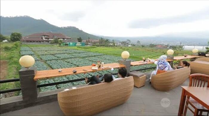 kuliner malang pupuk bawang menawarkan suasana makan di alam terbuka