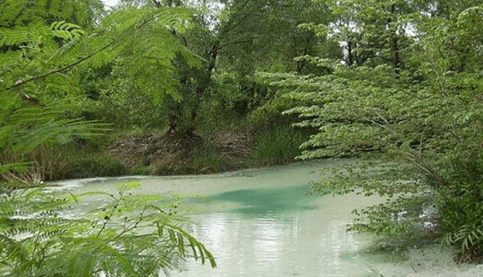 salah satu sudat lain hutan wanawisata ciwaringin yang juga mneghadirkan kesejuakn air di dalam hutan