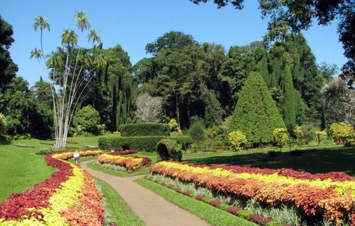 taman botani adalah taman air terjun yang menjadi slaah satu tempat wisata di penang