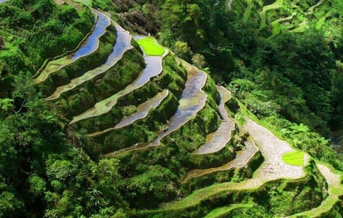 Tempat wisata di Filipina ini adalah terasering tertinggi di dunia.