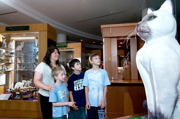 Cat museum merupakan tempat wisata di Kuching yang di dalamnya memiliki sejumlah koleksi yang bertema kucing.
