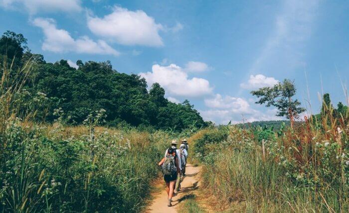 Salah satu objek menarik di tempat wisata di Kamboka ini adalah Cardamom Tented Camp.
