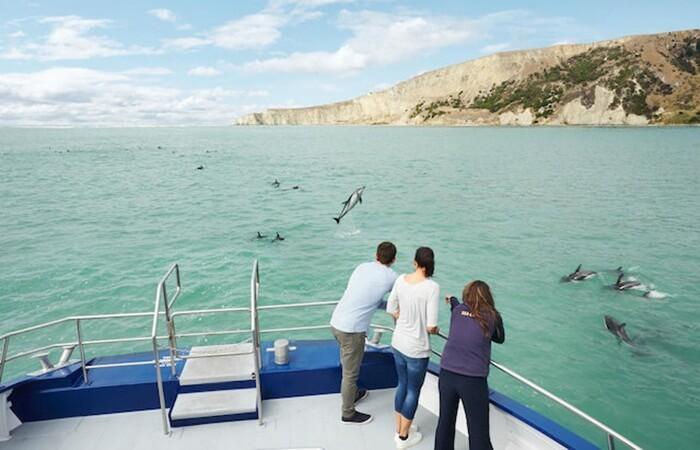 Kaikuora merupakan kota Tempat Wisata di New Zealand yang terletak di pulau bagian selatan Selandia Baru