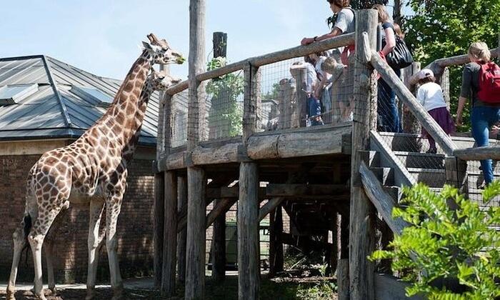 kebun binatang tempat wisata di London yang terletak di Regent's Park, London ini merupakan rumah bagi 650 spesies binatang yang berbeda.