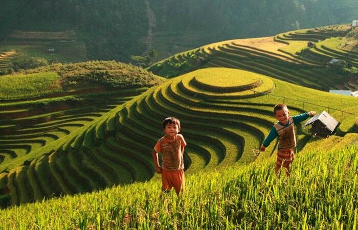 tempat wisata di Vietnam  Sa Pa menyuguhkan pemandangan seperti pedesaan yakni dengan ikon terasiring.