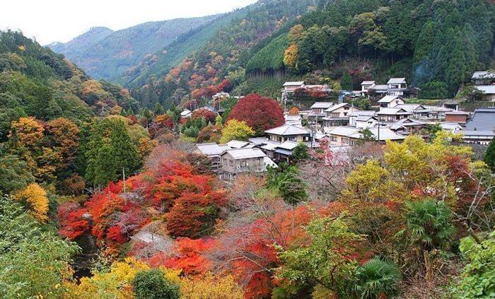 gunung tempat wisata di Tokyo ini masih terletak di dalam metropolitan Tokyo dan hanya membutuhkan waktu 50 menit dari Shinjuku.