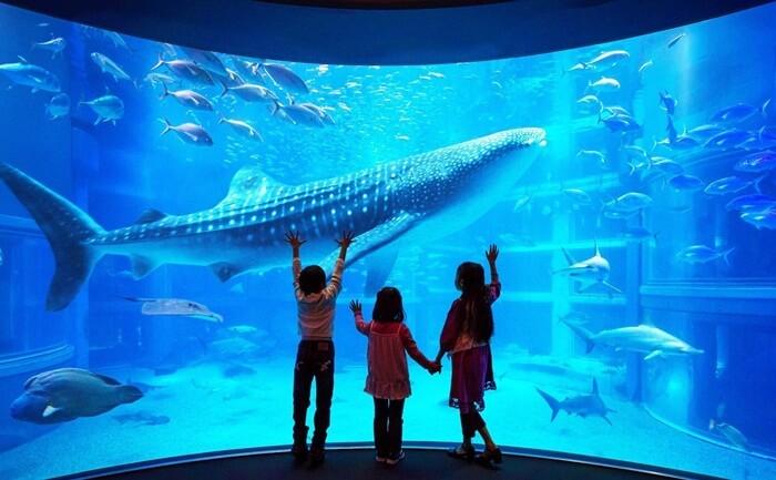 tempat wisata di Osaka Aquarium Kaiyukan merupakan salah satu akuarium terbesar di dunia.